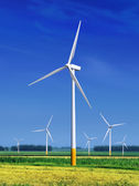 Meadow with Wind turbines l — Stock Photo