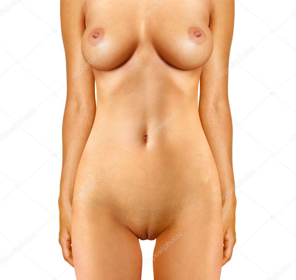 stock photo naked woman anatomical