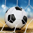 Stock Photo: Ball on ground near goal-area
