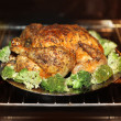 Cooking roast turkey — Stock Photo