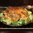 Cooking roast turkey — Stock Photo #29827593