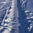 Stock Photo: Winter footpath
