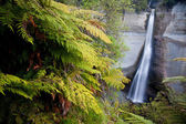 Waterfall in New Zealand — Stock Photo
