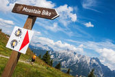 Mountain biking — Stock Photo
