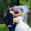 Wedding couple kissing covered veil — Stock Photo