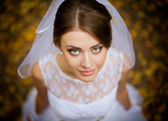 Beautiful portrait of the bride on the wedding day — Stock Photo
