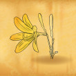 Gold flower — Stockvector #28165593