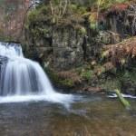 Waterfall — Stock Photo #20063963