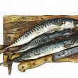 Fresh mackerel on chopping board — Stock Photo