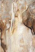 Javoricko stalactite cave — Stock Photo