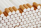 Filter cigarettes — Stock Photo