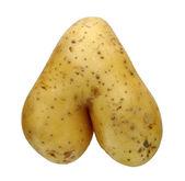 Aardappel — Stockfoto