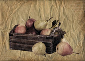 Vintage pears — Stock Photo