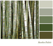 Bamboo palette — Stock Photo