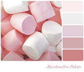 Marshmallow palette — Stock Photo