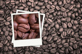 Coffee beans polaroid — Stock Photo