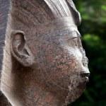 Pink Granite Sphinx — Stock Photo