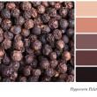 Peppercorn palette — Foto Stock