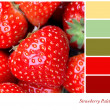 Stock Photo: Strawberry Palette