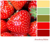 Strawberry Palette — Stock Photo