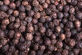 Fond de grains de poivre — Photo