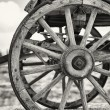 Old wagon wheels — Stock Photo #18502101