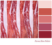 Parma ham palette — Stock Photo