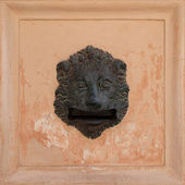Lion head postbox — Stock Photo