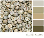 Green Coffee bean palette — Stock Photo