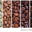Grades of coffee roasting — Stock Photo