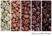 Grades of coffee roasting — Stock Photo