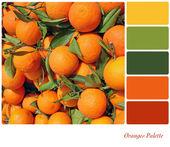Oranges Palette — Stock Photo