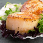Sear scallops on lettuce — Stock Photo #25451911