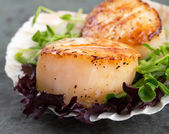 Sear scallops on lettuce — Stock Photo