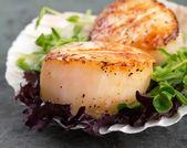 Sear scallops on lettuce — Stock Photo