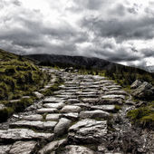 Mount Snowdon path — Stock Photo