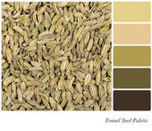 Fennel Seed Palette — Stock Photo