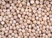 White peppercorn background — Stock Photo