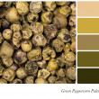 Stock Photo: Green Peppercorn Palette