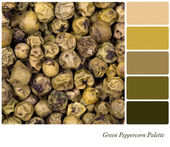 Green Peppercorn Palette — 图库照片
