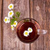 Camomile tea — Stock Photo