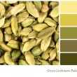 Green cardamom palette — Stock Photo