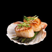 Seared scallops over black — Stock Photo