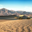 Stock Photo: Mesquie dunes pano
