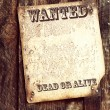 Wanted poster — Stock Photo #32394711