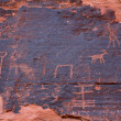Petroglyphs in the Valley of Fire — Stock Photo