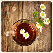 Camomile tea old photo — Stock Photo