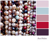 Pearl palette — Stock Photo
