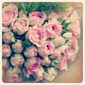 Pink rosebuds old photo — Stock Photo