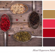 Mixed peppercorns Palette — Stock Photo #48789923